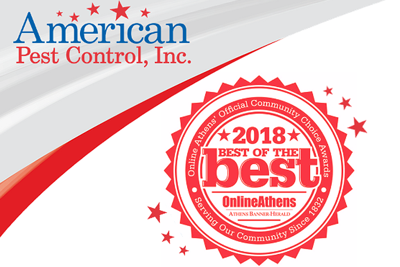 Best of the Best – Thank you, Athens!