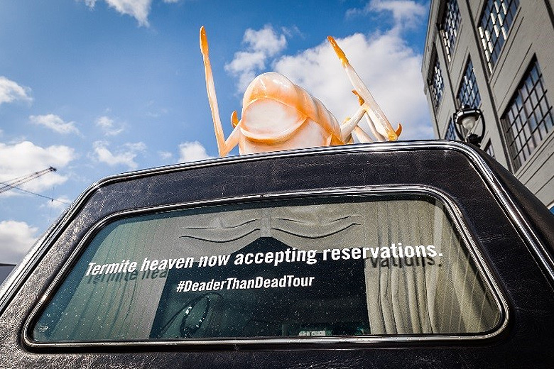 Deader Than Dead Tour Tackles the Termite Threat in Athens